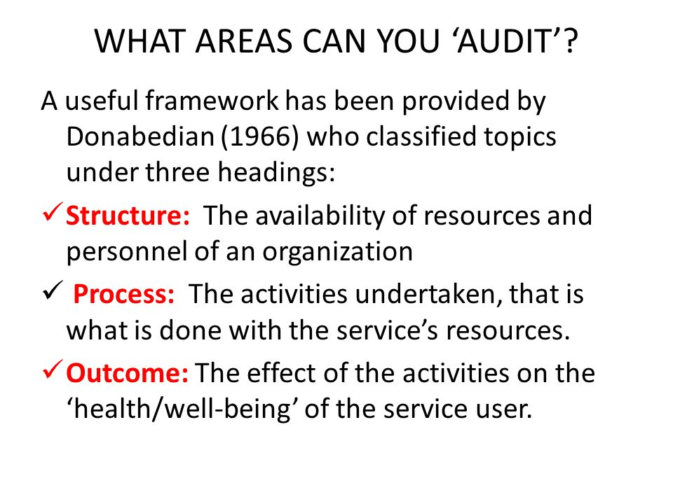 WHAT AREAS CAN YOU 'AUDIT'