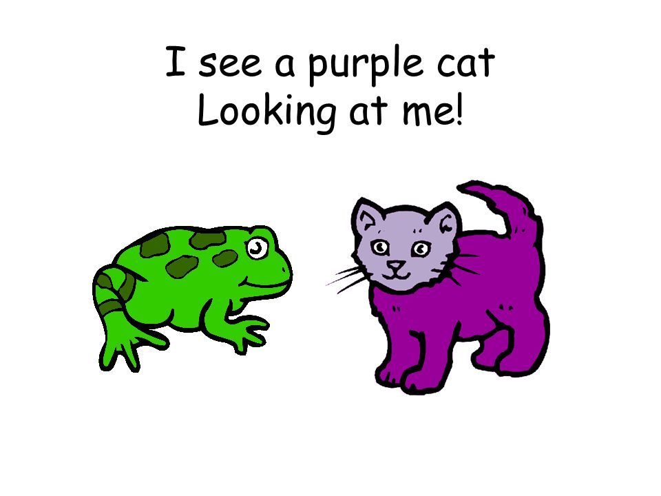 I see a purple cat Looking at me!