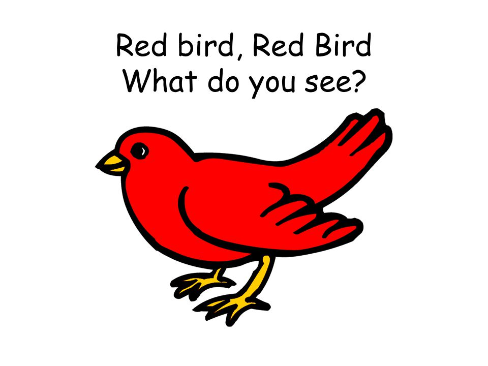 Red bird, Red Bird What do you see