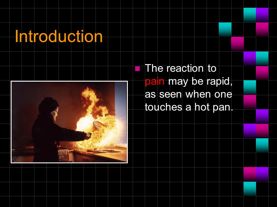 Introduction The reaction to pain may be rapid, as seen when one touches a hot pan.