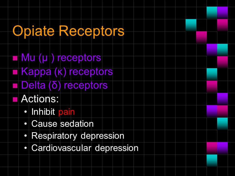 Opiate Receptors Μu (μ ) receptors Kappa (κ) receptors