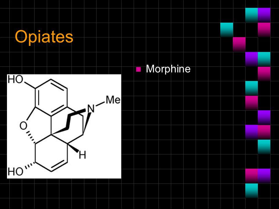 Opiates Morphine