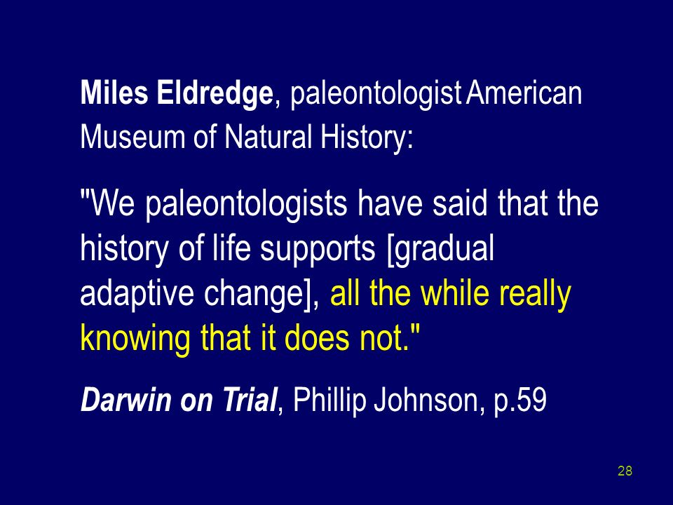 Miles Eldredge, paleontologist American Museum of Natural History: