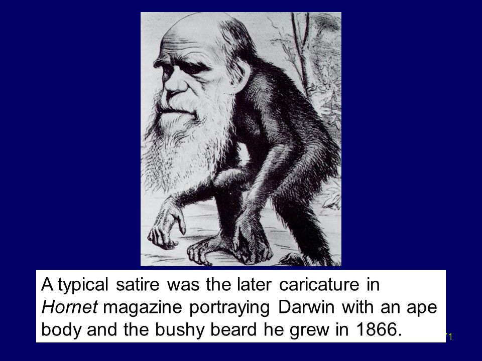 A typical satire was the later caricature in Hornet magazine portraying Darwin with an ape body and the bushy beard he grew in 1866.