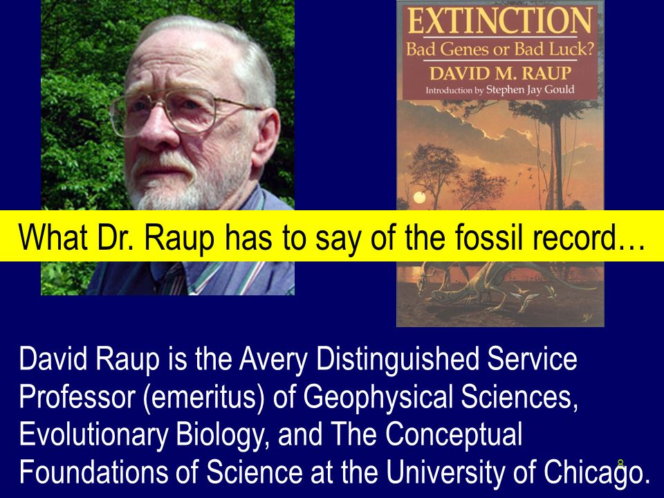 What Dr. Raup has to say of the fossil record…