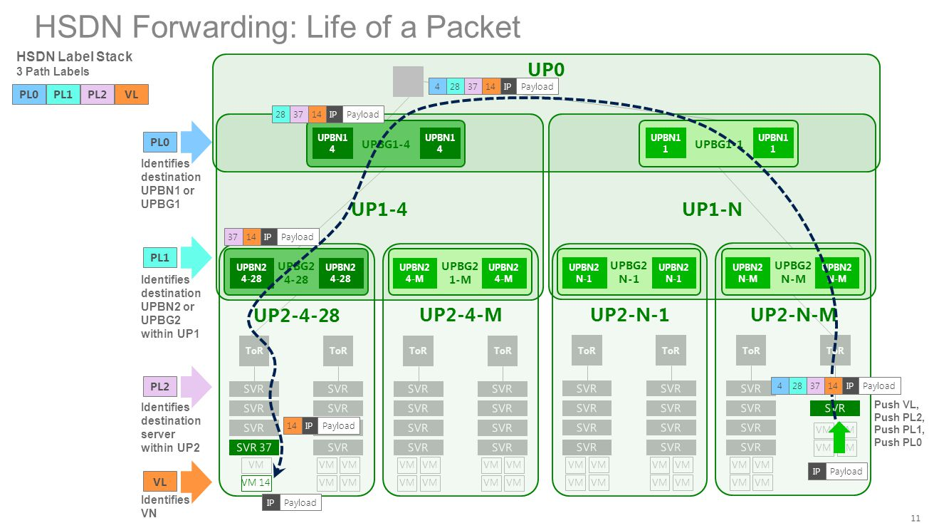 HSDN Forwarding: Life of a Packet