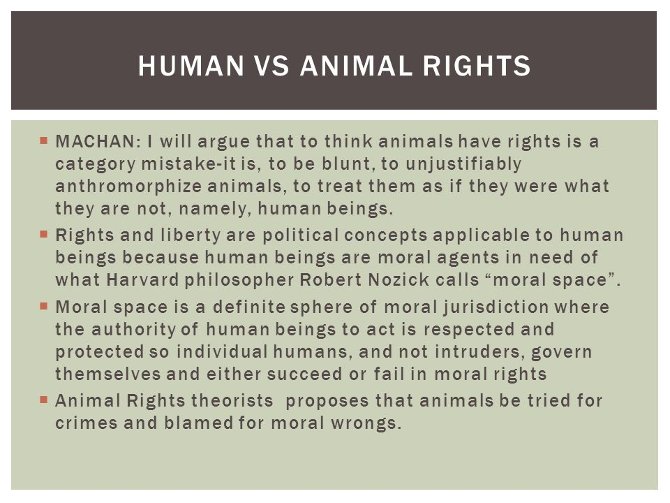 Human vs Animal Rights