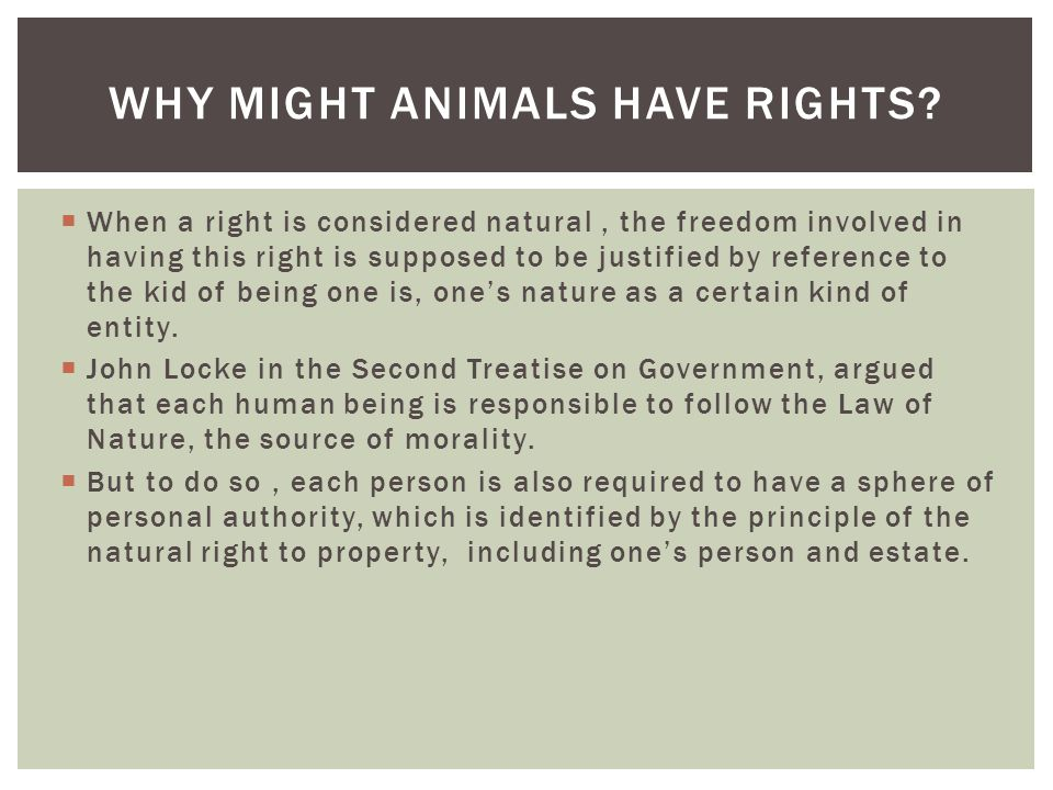 Why Might Animals Have Rights