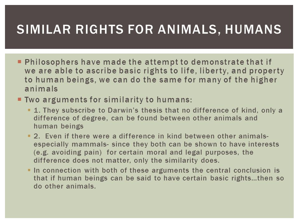 Similar rights for animals, humans