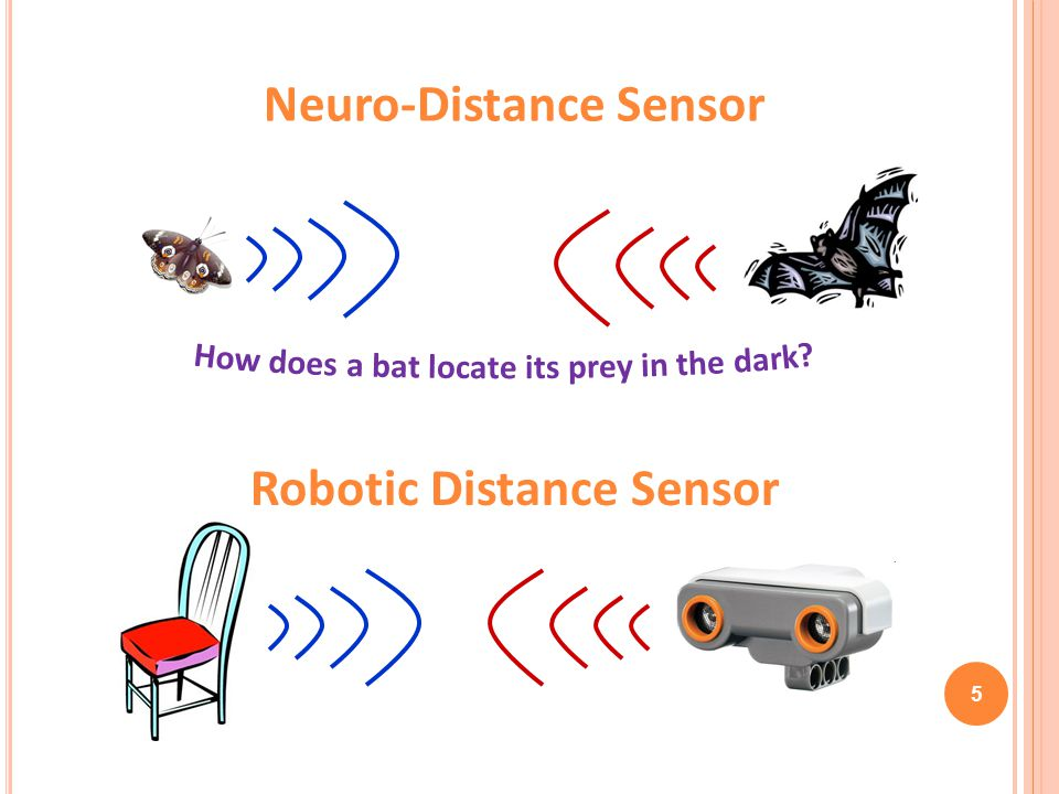 Neuro-Distance Sensor Robotic Distance Sensor
