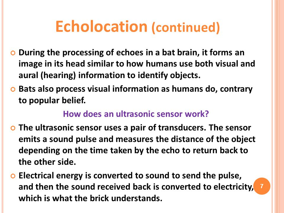 Echolocation (continued) How does an ultrasonic sensor work