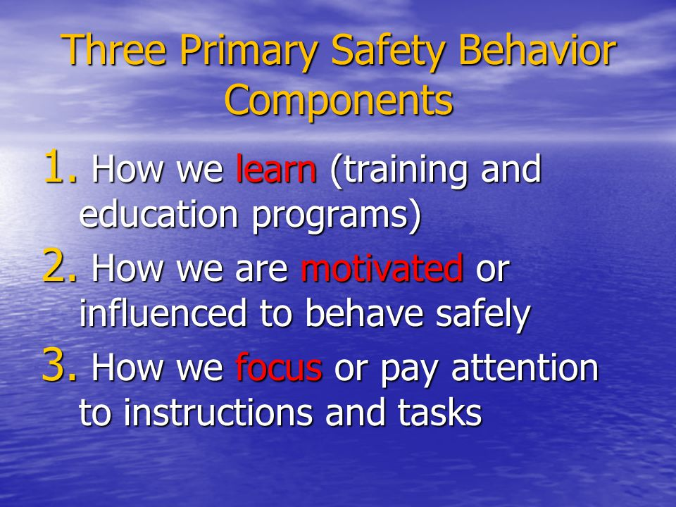 Three Primary Safety Behavior Components