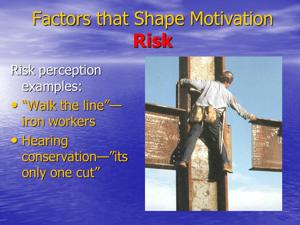 Factors that Shape Motivation Risk