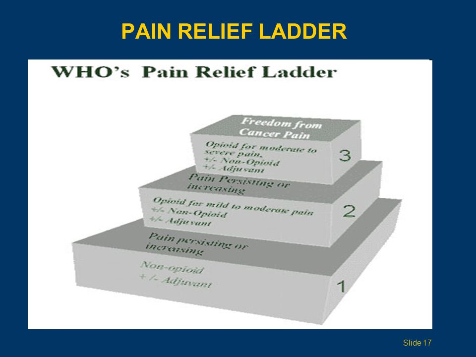 PAIN RELIEF LADDER Topic