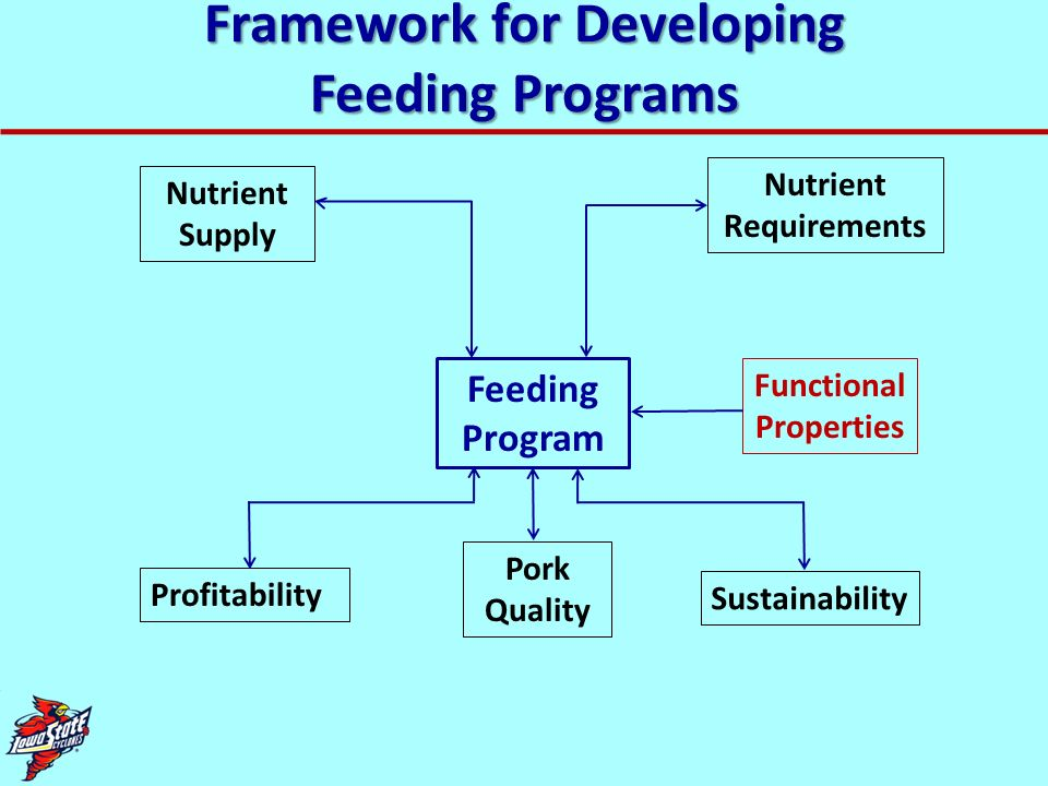 Framework for Developing Feeding Programs