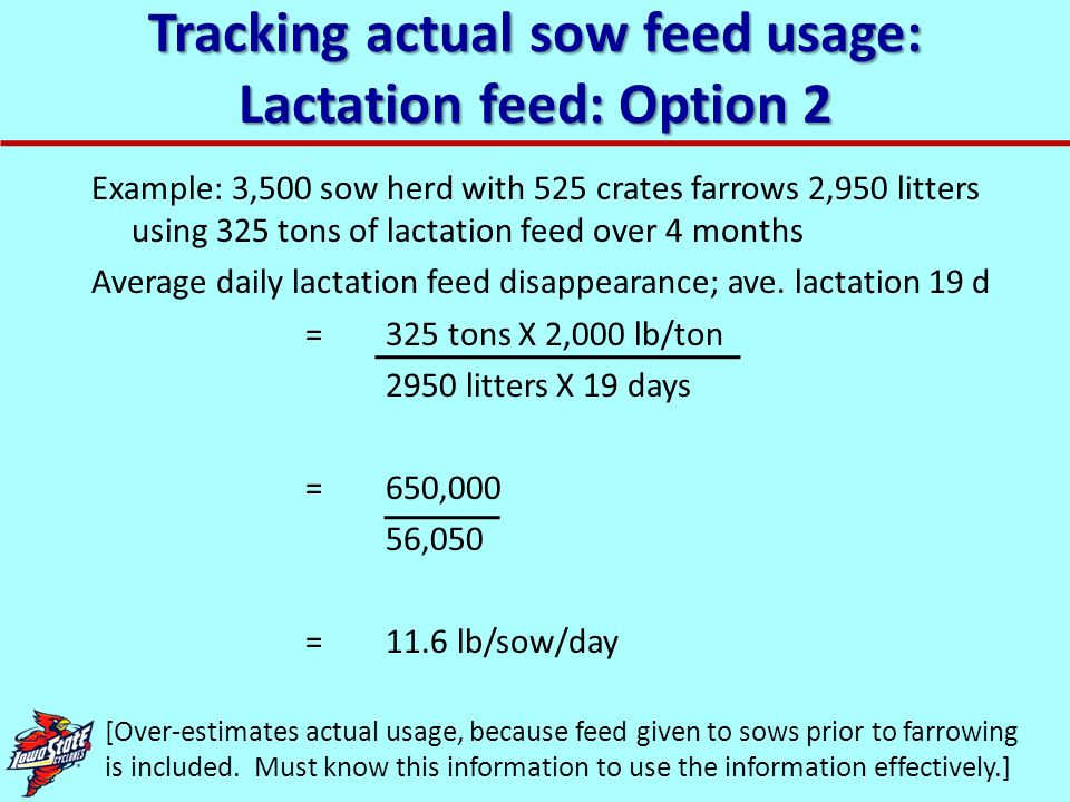 Tracking actual sow feed usage: Lactation feed: Option 2