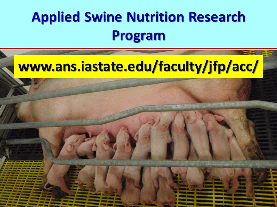 Applied Swine Nutrition Research Program