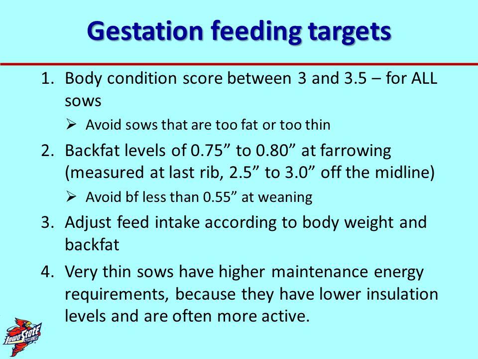 Gestation feeding targets