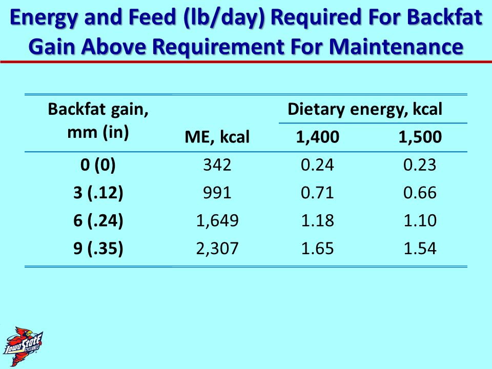 Energy and Feed (lb/day) Required For Backfat Gain Above Requirement For Maintenance