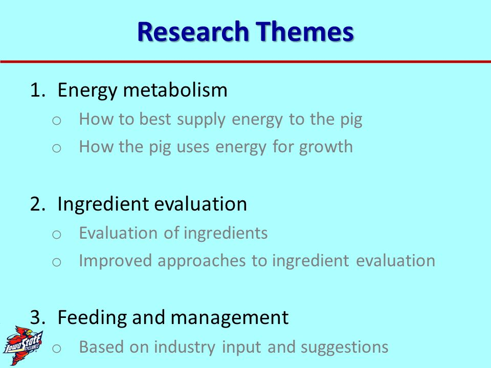 Research Themes Energy metabolism Ingredient evaluation