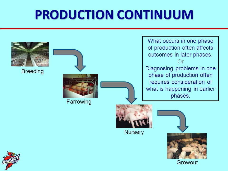 PRODUCTION CONTINUUM What occurs in one phase of production often affects outcomes in later phases.