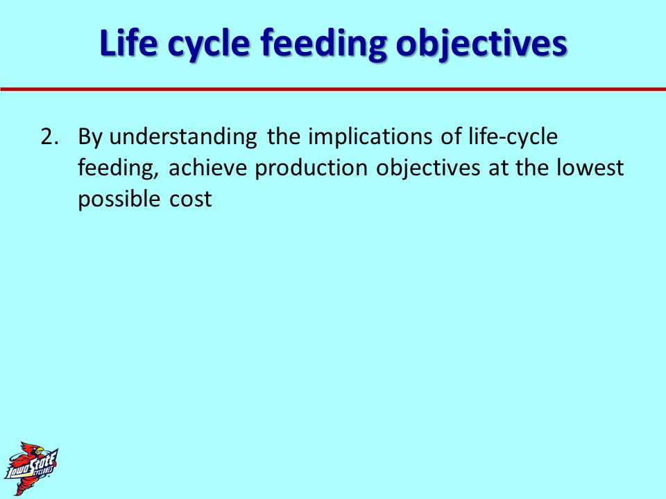 Life cycle feeding objectives