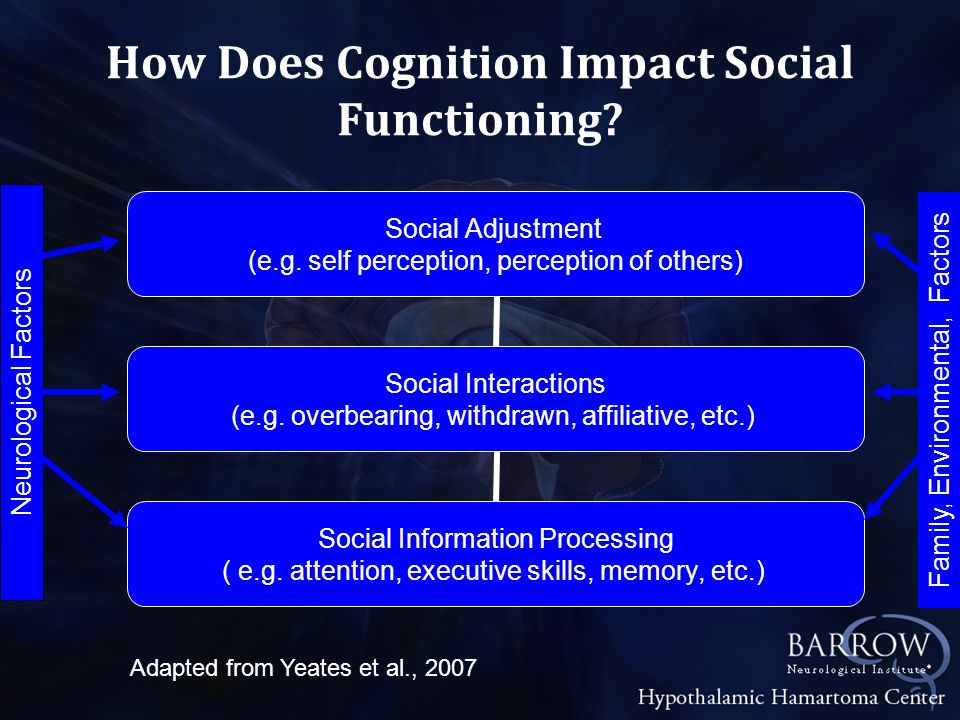 How Does Cognition Impact Social Functioning