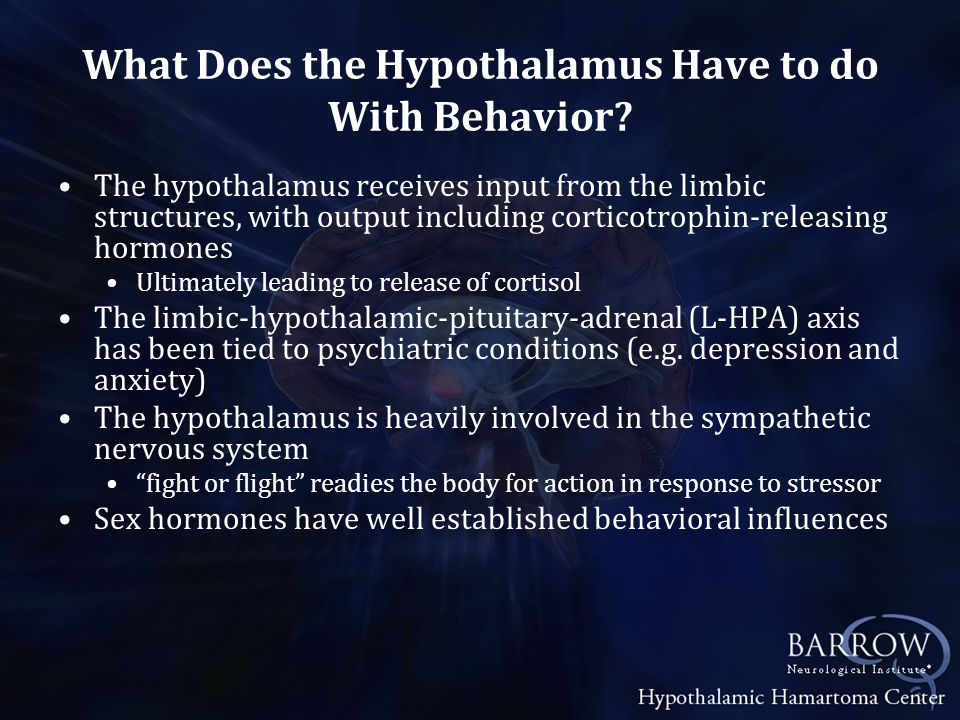 What Does the Hypothalamus Have to do With Behavior