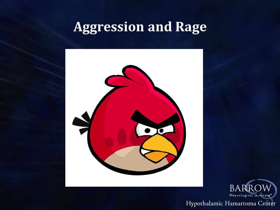 Aggression and Rage