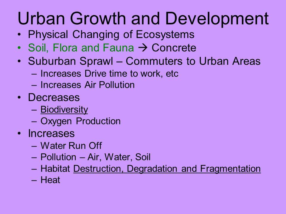 Urban Growth and Development