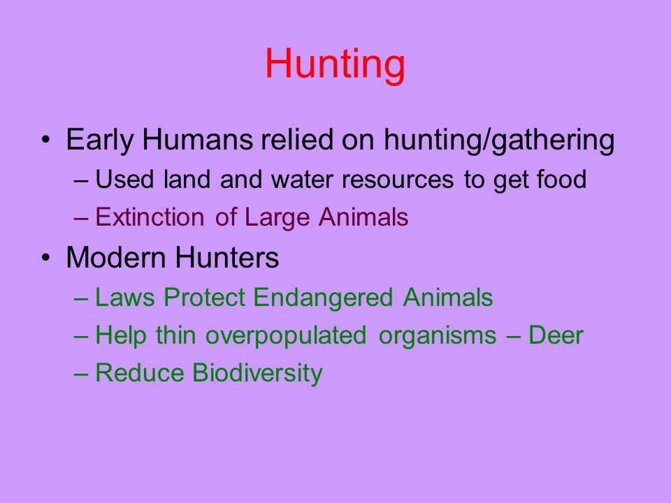 Hunting Early Humans relied on hunting/gathering Modern Hunters