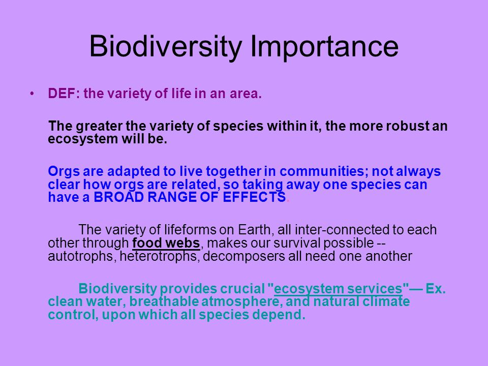 Biodiversity Importance