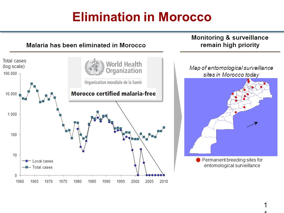Elimination in Morocco
