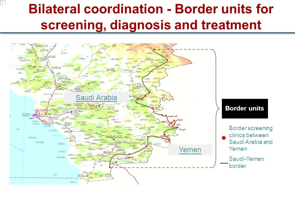 Bilateral coordination - Border units for screening, diagnosis and treatment