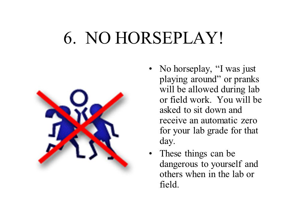 6. NO HORSEPLAY!