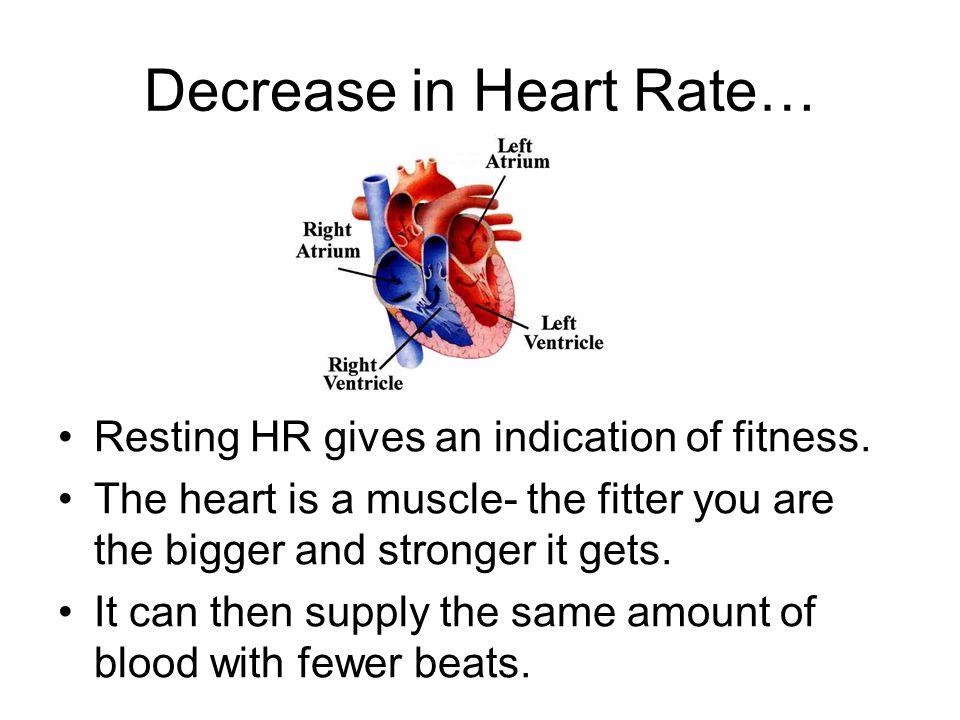 Decrease in Heart Rate…