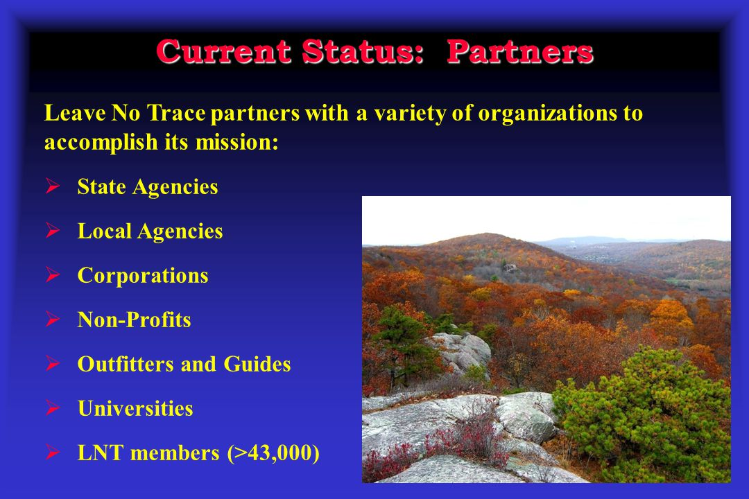 Current Status: Partners