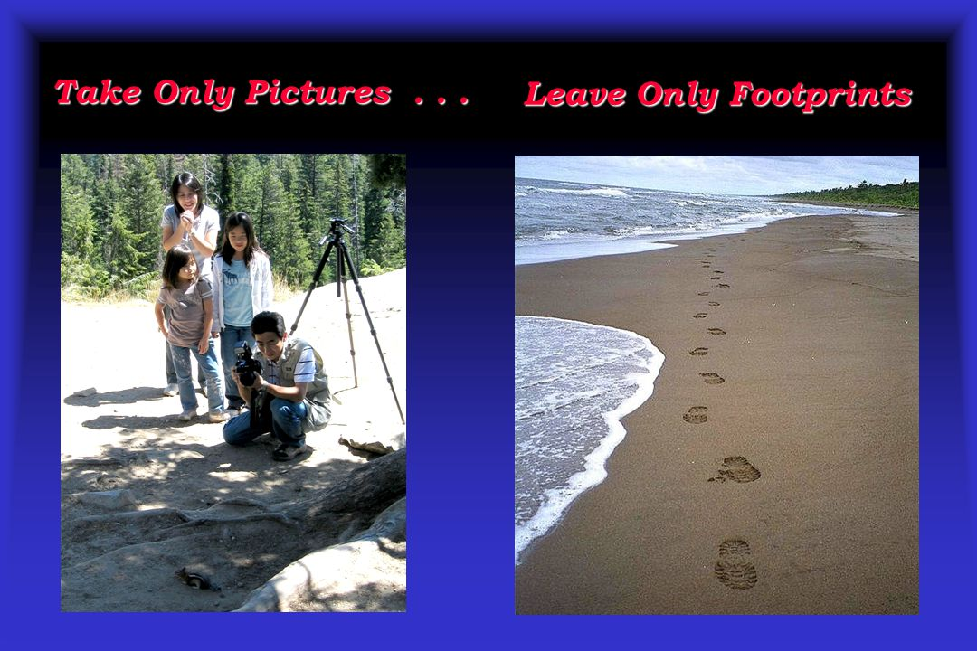 Take Only Pictures . . . Leave Only Footprints