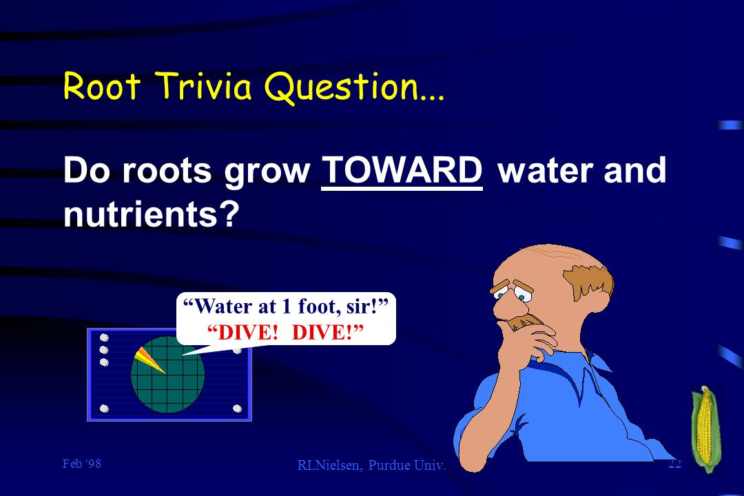 Do roots grow TOWARD water and nutrients