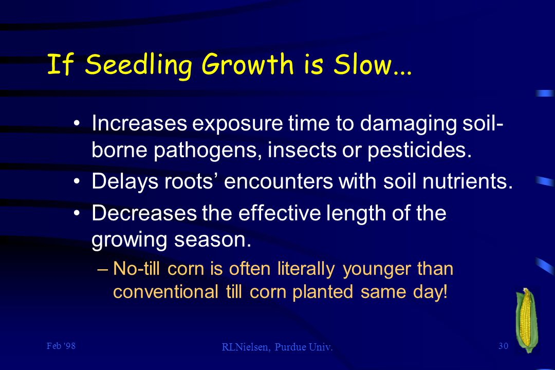 If Seedling Growth is Slow...