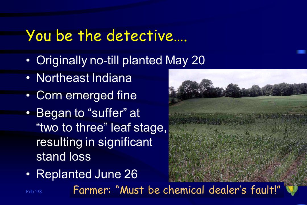 You be the detective…. Originally no-till planted May 20