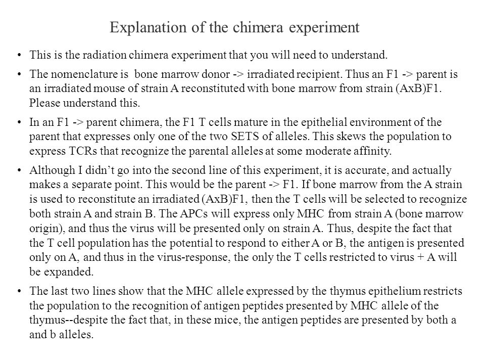 Explanation of the chimera experiment
