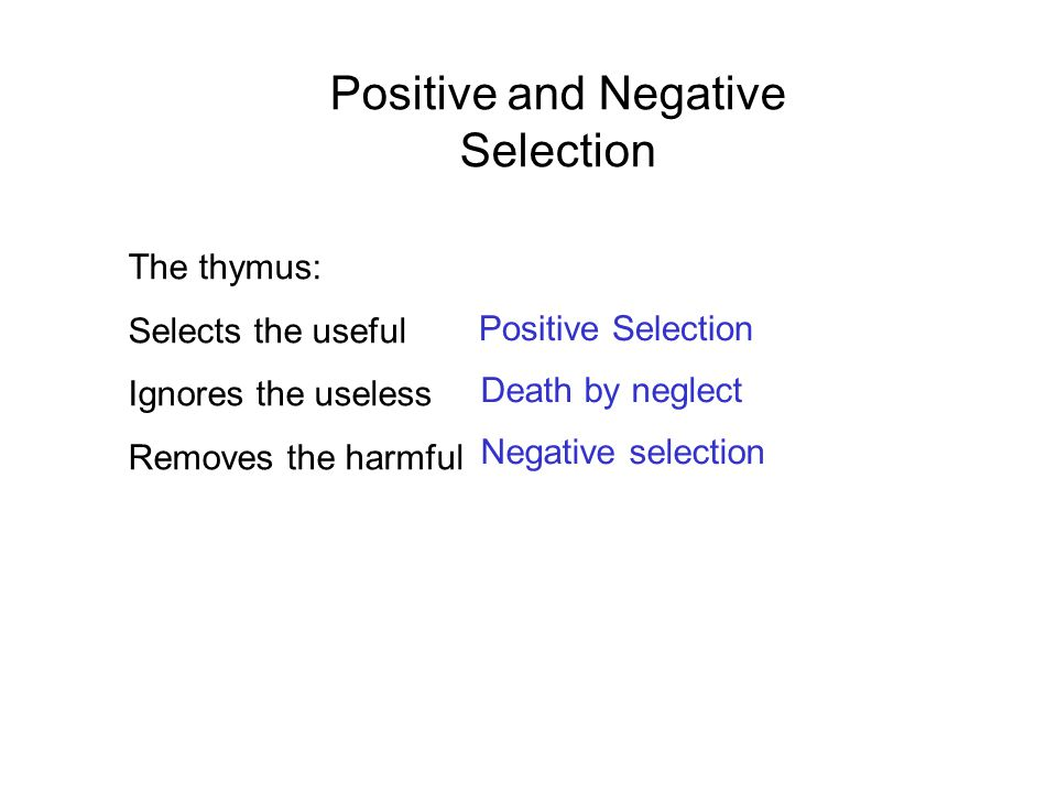 Positive and Negative Selection