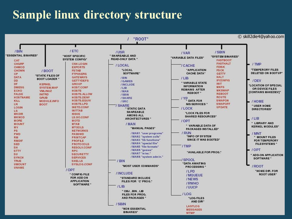Sample linux directory structure