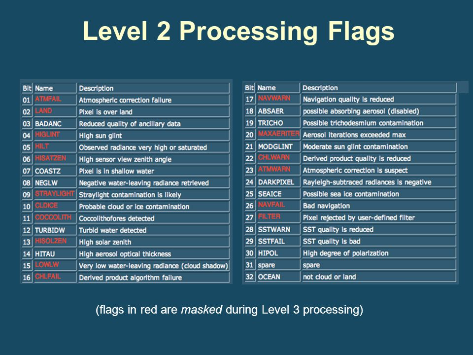 Level 2 Processing Flags