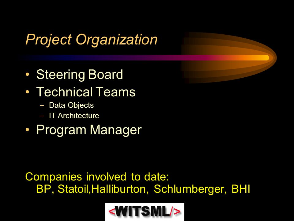 Project Organization Steering Board Technical Teams Program Manager
