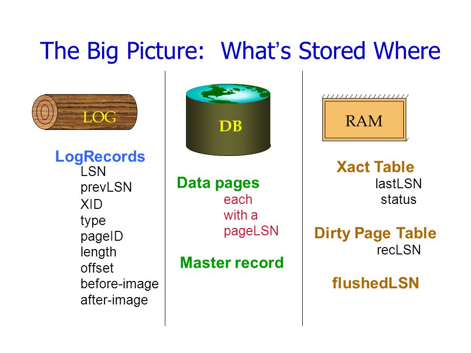 The Big Picture: What's Stored Where