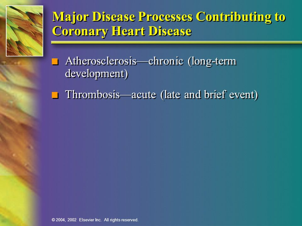 Major Disease Processes Contributing to Coronary Heart Disease
