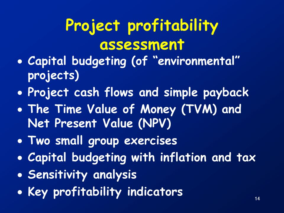 Project profitability assessment