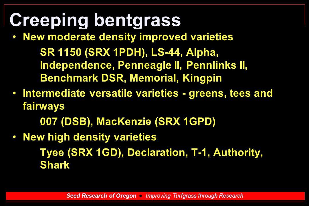 Creeping bentgrass New moderate density improved varieties